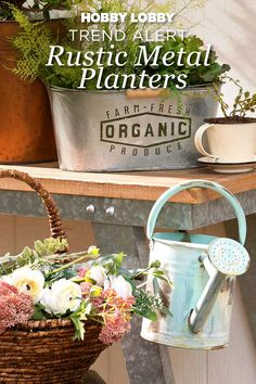 Update the greenery in your house with rustic metal containers that make perfect planters – with a touch of attitude.