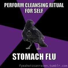 [Image description: Background: 6 piece pie style color split with black and purple alternating. Foreground: A raven standing and wearing a pentacle necklace.  TOP TEXT: Perform cleansing ritual for self  BOTTOM TEXT: Stomach flu.] Another lesson in taking care regarding HOW things are worded. On the bright side, I've inadvertently kick-started some weight loss here. I don't recommend this method :c