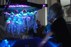 Egg Carton Challenge- A Jellyfish Forest
