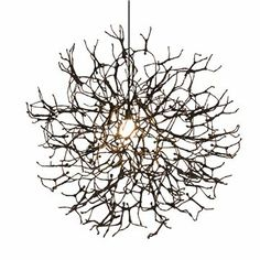 Floral Pendant Light  Pendant lights Flower and Offices