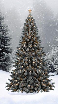 •§♥§• Holidays ~ Christmas ~ Yule