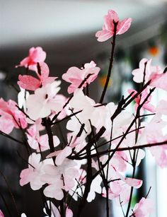 Sad fact: I have never seen real cherry blossoms. You don't find them so much here in the Midwest and I have never been out east mid-spring when they are blossoming. But one day we will time it right. One day. Actually, years ago, I dragged a friend into lunch at the famous Pool Room…