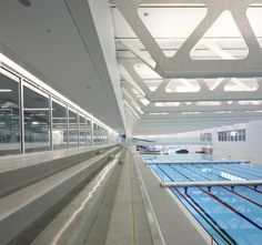 Guildford Aquatic Centre | SHAPE Architecture