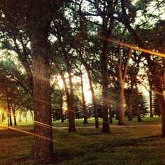 Early morning at Island Park in #Fargo, ND!