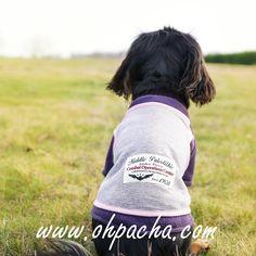 Adoptez la fraicheur de vivre ❤  Sweat pour chien urban disponible du XS au XL à partir de 23,90 €. Boutique en ligne : http://www.ohpacha.com/39-sweat-pour-chien-et-pull