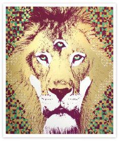NateDuval.com: lion