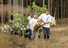 bäume pflanzen aktion - Google претрага