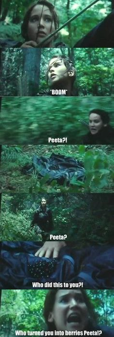 Is it odd that I fiind the hunger games stuff funny even though I've never read the books?