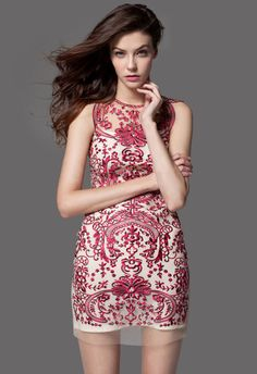 Embroidered Sleeveless Party Dress