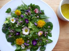 Květinový salát - EDIBLE FLOWER AND LEAFY VEGGIE SALAD
