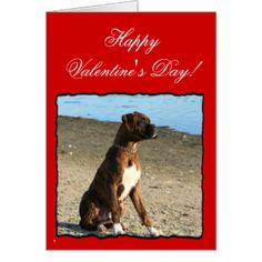 Luv Boxers Valentine Boxers for Men
