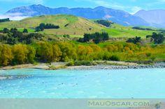 Coastal Pacific: Viajando de trem pela costa da ilha sul da Nova Zelândia