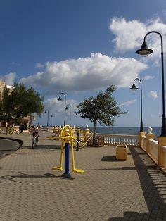 From Gran Canaria. Las Palmas. Islas Canarias. ( Canary Island, Africa NW )