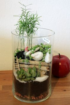1000 images about jardin zen on pinterest water for Jardin zen miniature