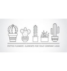 Linear design potted cactus succulents vector- by Leyasw on VectorStock®
