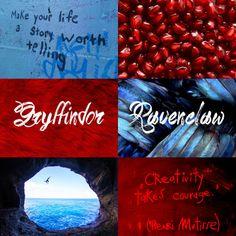 Hybrid House Aesthetics: Gryffinclaw