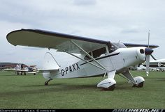 Piper PA-20-135 Pacer aircraft picture