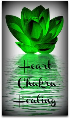 Your heart chakra is the center point of all your chakras. It's all about the love here as we learn to open the chakra heart. Feel the magic in your green chakra. Heart Chakra Healing, Healing Hands, Healing Crystals, Green Chakra, Anahata Chakra, Chakra Cleanse, Love And Forgiveness, Chakra Colors, Chakra System