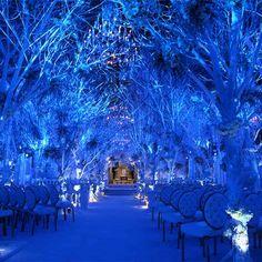 Melissa Rivers' Winter Wonderland Wedding (Preston Bailey)