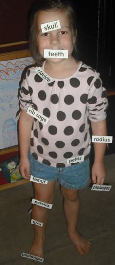 bone unit: great ideas for studying bones, including labeling your own bones!