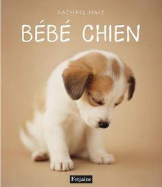 Bebe chien Documentaire Jeunesse Nature Rachael Hale / 2007