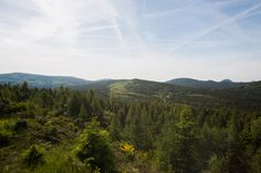 Crystal valley in the summer light. This Is Us, Old Things, Crystals, Lighting, Glass, Nature, Summer, Travel, Bohemia