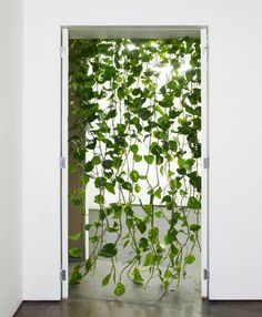 A green and contemporary spin on the beaded curtain door   ~   if I only had a green thumb