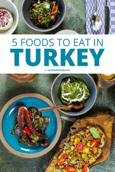 These 5 tasty things to eat in Turkey are on most Turkish menus – easy to enjoy at home, they will quickly transport you to the souks and cafes of Turkey. #travel #Turkey #Istanbul #food #cuisine #Turkish Turkish Snacks, Turkish Recipes, Indian Food Recipes, Asian Recipes, Ethnic Recipes, Kebab Recipes, Japenese Food, Turkey Travel, Vegetarian Options