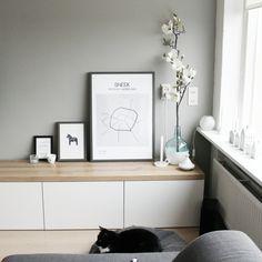 Het meubelstuk in huis waar ik het meest trots op ben is mijn tv meubel. Ik krijg er altijd veel vragen over dus daarom zet ik alle info even op een rij! Het tv meubel bestaat uit 2 onderdelen, witte kastjes en een plank. De witte kastjes zijn Bestå kastjes van Ikea. Ik heb 2 dubbele …