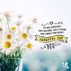 Thank You Ecards | DaySpring