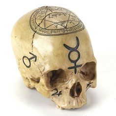 The Luciferian Apotheca - Your Satanic, Left Hand Path & Occult Shop - Qabalistic - Black Alchemy Skull Memento Mori, Cthulhu, Wiccan, Witchcraft, Real Human Skull, Mystic Symbols, Necromancer, Skull And Bones, Vampires