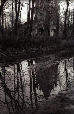 'Gothic Landscape' - photography by Yaroslav Gerzhedovich