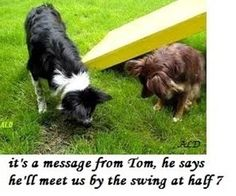 message from Tom.......................................Picture via Cheezburger, caption by me