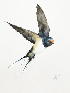 ARTFINDER: Barn Swallow (Hirundo rustica) by Andrzej Rabiega - Barn Swallow - watercolor Birds Painting, Animal Art, Art Drawings, Wildlife Art, Watercolor And Ink, Swallow Tattoo, Art, Bird Drawings, Watercolor Bird