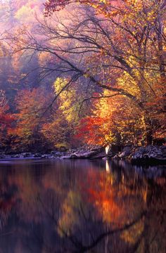 Little Pigeon Autumn Smokey Mountains, TN