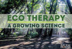 Eco therapy: A Growing Science | blog.frontiergap | www.frontier.ac.uk | #science #sciencedaily #blog #travelblog #volunteerabroad #therapy #mind #medicine #medical #healthcare