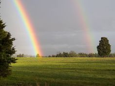 I was sitting in my car waiting for the rain to stop when I was presented with a double rainbow with the strong side sitting right in top of a tree. Never did find my pot of gold... #virginia #doublerainbow #rainbow #landscape