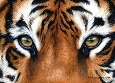 Tiger eyes Oil on canvas  #artoftheday #realism #art #artwork #art_empire #artfido #artspotlight #justartspiration #art_spotlight #art #painting #wildlife #arts_help #arts #tiger #tigerart #paintings #wildlifeartists #wildlifeart #animalart #artifeature #artshare #iglobalpics #artfido #artistic_share #artistic_nation #art_gallery #arts_gallery #arts_help #artdraw #artworksfever