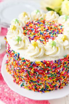 This Funfetti Birthday Cake is made with a fluffy white cake loaded with rainbow sprinkles and wrapped in a white chocolate whipped cream frosting! Cupcakes, Cupcake Cakes, Cupcake Party, Chocolate Whipped Cream Frosting, Cake Recipes, Dessert Recipes, Fun Recipes, White Birthday Cakes, Waffle Cake