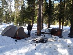 Nice Sequoia Camping photos | Backpack Outpost