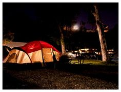 Make your Tent Camping site reservation at San Diego Metro KOA located in Chula Vista, California. Tent Camping, Campsite, Chula Vista, Outdoor Gear, Summer Time, San Diego, California, America, Camping