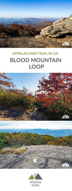 Hike a six mile loop to Georgia's highest Appalachian Trail summit, climbing the AT and Byron Reece Trails to beautiful views at the Blood Mountain summit before looping back through a fern-filled forest on the Freeman Trail