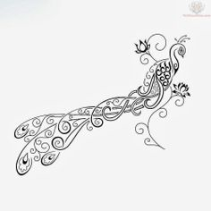 feather tattoo tribal   tribal peacock feather tattoos a peacock bird become a tribal tattoos ...