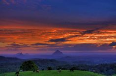 Glasshouse Mountains sunset - the simple things in life - appreciate the beauty that mother nature has to offer Best Sunset, Beautiful Sunset, Beautiful World, Beautiful Places, Amazing Places, Glasshouse Mountains, Mountain Sunset, Photography Gallery, Sunshine Coast