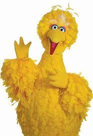 Pin By Kenda Davis 3 Peat On Yellow Bird Big Bird Sesame