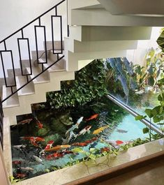 Best Picture For pool umrandung For Your Taste You are looking for something, and it is going to tell you exactly what you are looking for, and you didn't find that picture. Here you will find the mos Home Aquarium, Aquarium Design, Indoor Pond, Cool Fish Tanks, Amazing Aquariums, Indoor Waterfall, Paludarium, House Stairs, Interior Garden