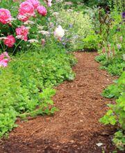 Jardinage.net : Conseils pratiques sur les paillis