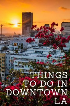 tHINGS-TO-DO-IN-dOWNTOWN-la-735-x-1102.jpg (735×1102)