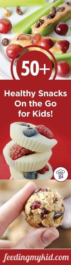50+ Healthy Snacks On the Go for Kids! - use snack time as a way to get good…  @ReTweetNGro