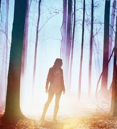 Allison Argent, Teen Wolf this pic is actually pretty cool with the lighting and the trees